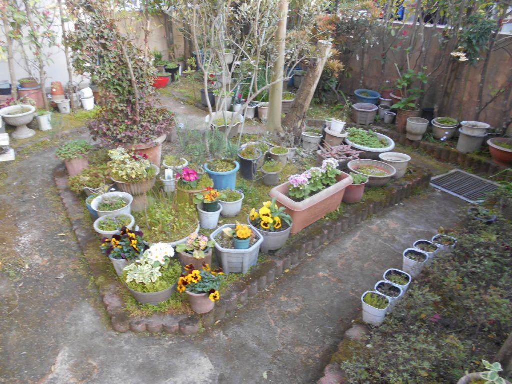 庭造り 外構工事