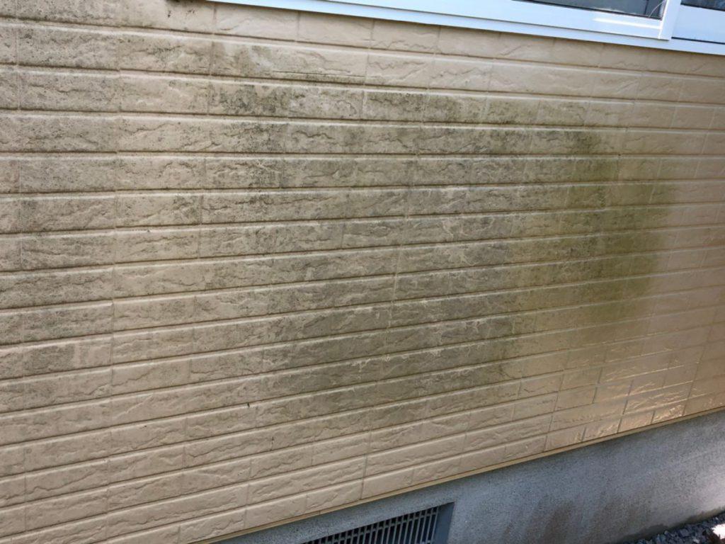 外壁汚れ・カビ