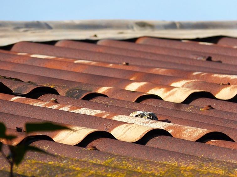 トタン屋根塗装3