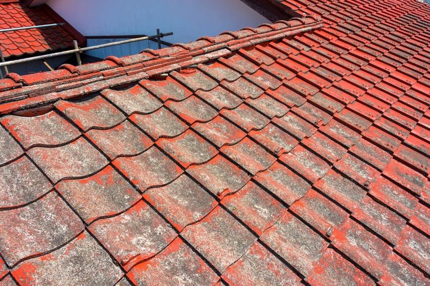 トタン屋根塗装5