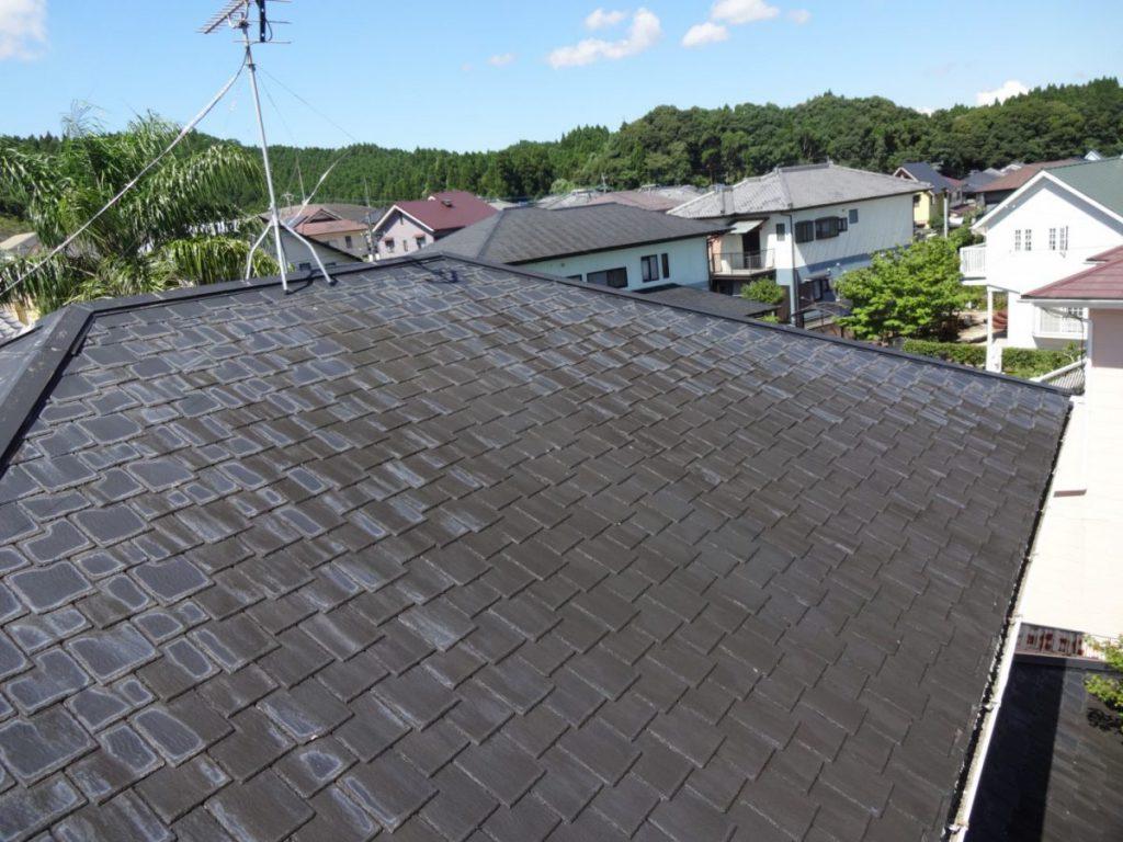 屋根の汚れの様子